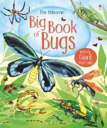 9781474928960-big-book-bugs